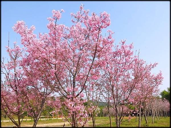 溪州公園_001.jpg