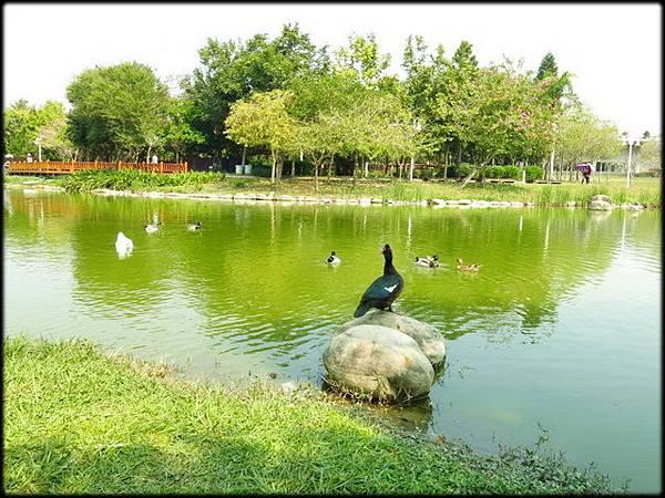 溪州公園_055.jpg