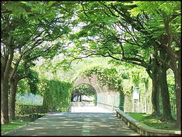 頂埔公園_004.jpg