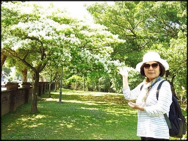 頂埔公園_009.jpg