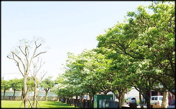 頂埔公園_020.jpg