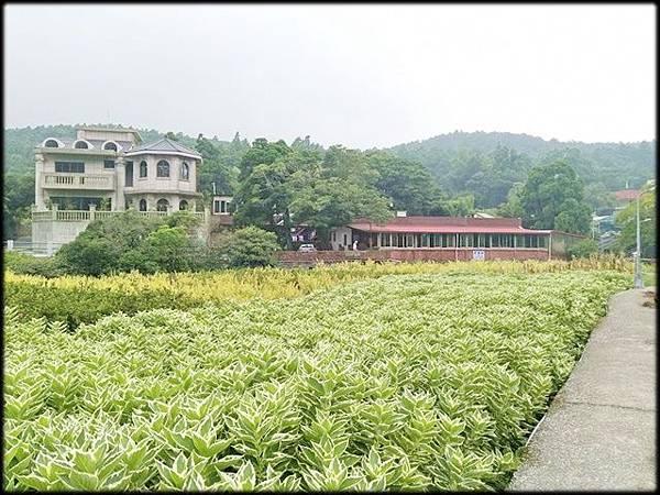 水圳步道、水車寮步道-1_001.jpg