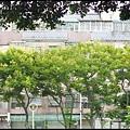 士校大池_37.jpg
