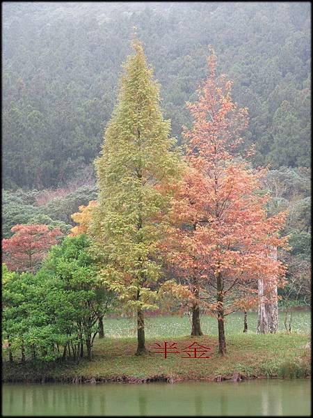 明池風景區_110.jpg