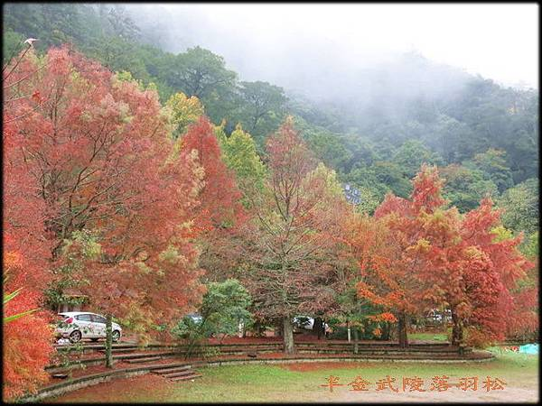 武陵農場(1)_039.jpg