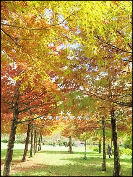 武陵農場(2)_189.jpg