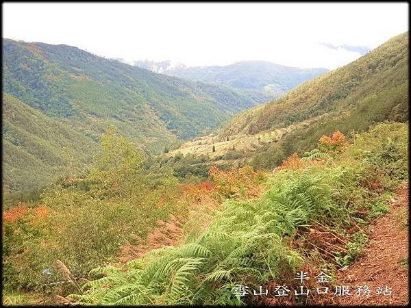 武陵農場(2)_100.jpg