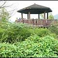 坪林石雕公園蕨類步道_027.jpg