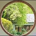 坪林石雕公園蕨類步道_047.jpg