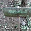三灣落羽松秘境_011.jpg