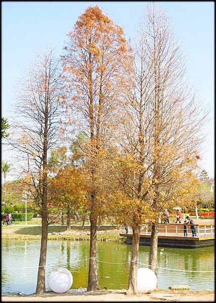 2019溪州公園_088.jpg