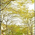 春遊碧潭_054.jpg