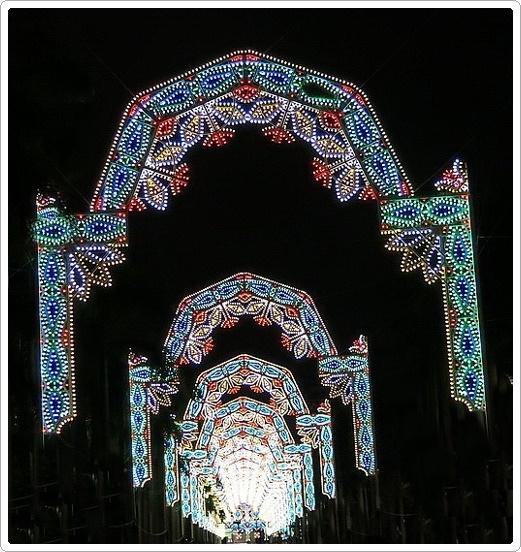 2019市府燈飾_0013_.jpg
