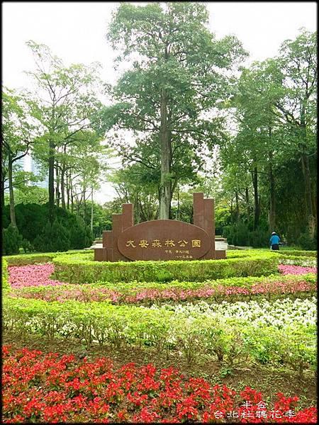 大安森林公園_015.jpg
