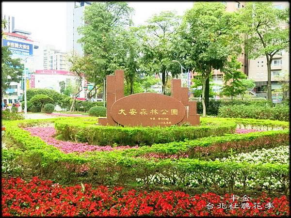 大安森林公園_018.jpg