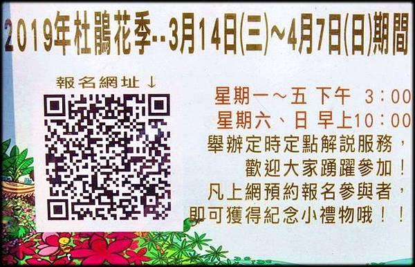 大安森林公園_112.jpg