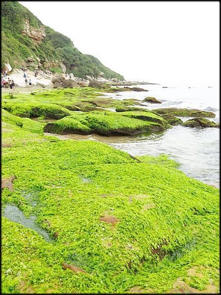 水尾港神秘海岸_027.jpg