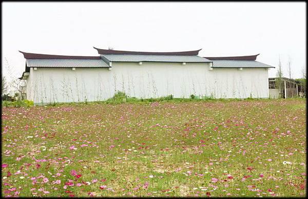 桃園農業博覽_119.jpg
