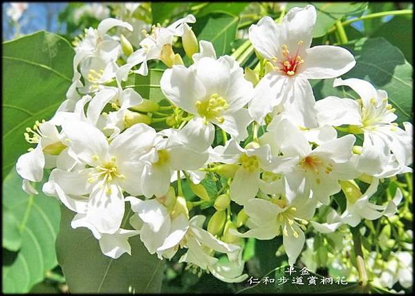 湖口仁和步道_035.jpg