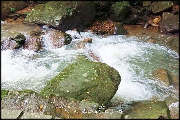 大溝溪步道_069.jpg