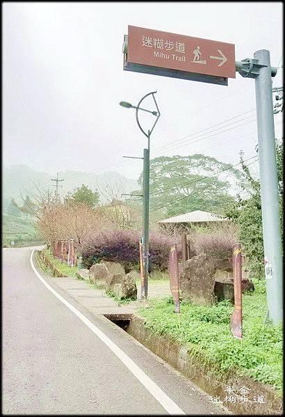迷糊步道-3_022.jpg