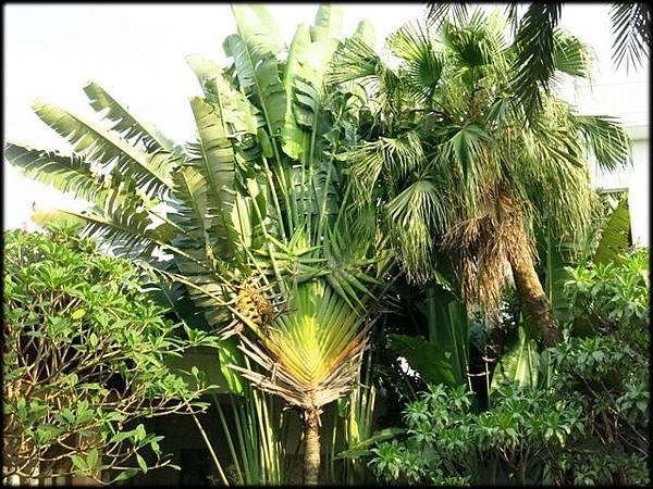 雅閔峇里海岸觀光工廠_012.jpg