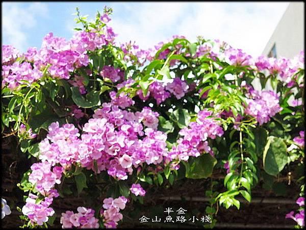 金山魚路小棧_009.jpg