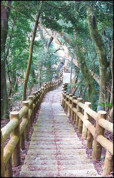 仙山步道_025.jpg