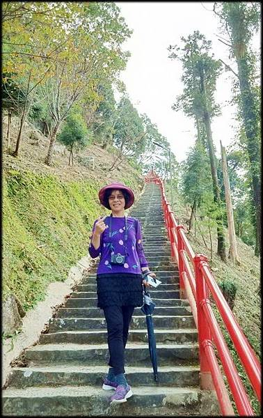仙山步道-2_030.jpg