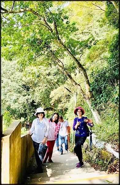 仙山步道-5_011.jpg