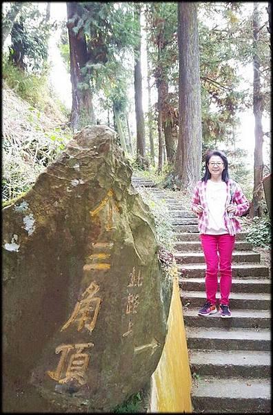 仙山步道-5_003.jpg