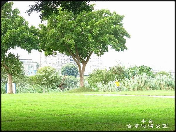 古亭河濱公園_058.jpg