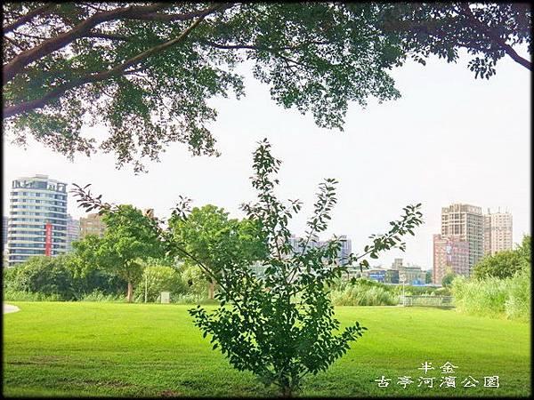 古亭河濱公園_053.jpg