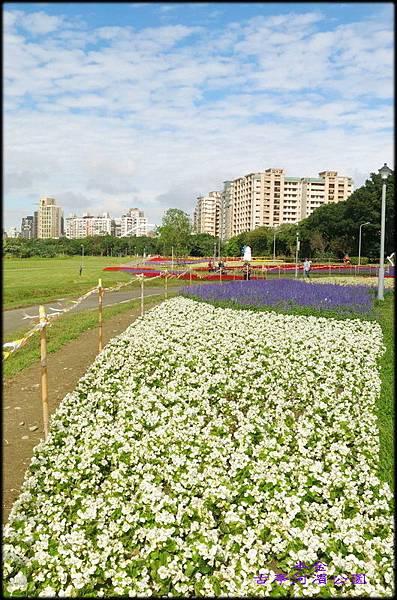 古亭河濱公園_096.jpg