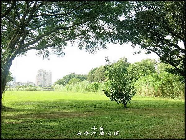 古亭河濱公園_105.jpg
