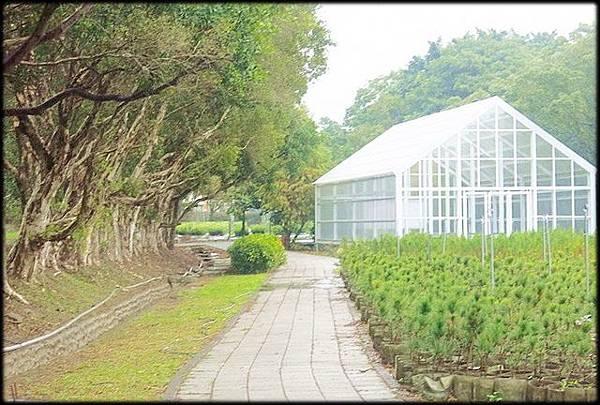 龜山苗圃綠環境生態園區_020.jpg