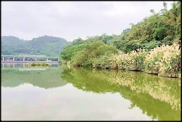 大湖公園_005.jpg