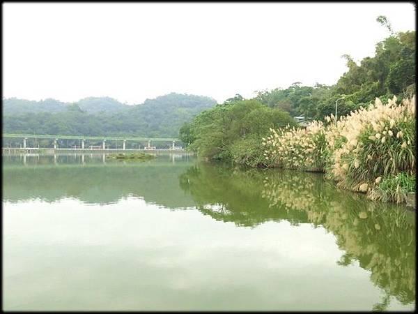 大湖公園-1_008.jpg