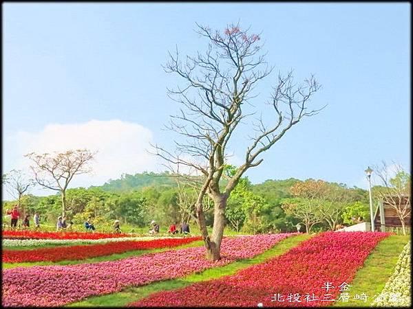 北投社三層崎公園_008.jpg