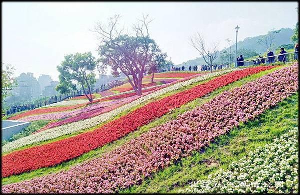 北投社三層崎公園-1_014.jpg