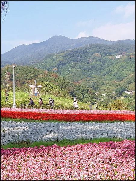 北投社三層崎公園-2_013.jpg