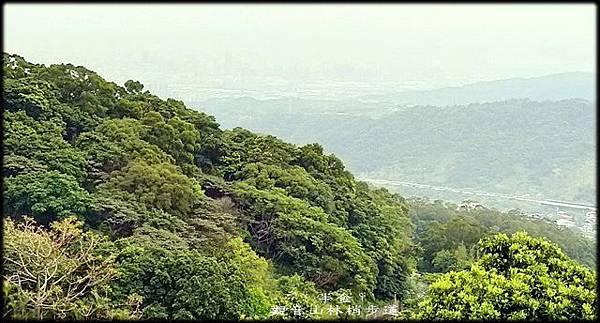 觀音山林梢步道-1_006.jpg