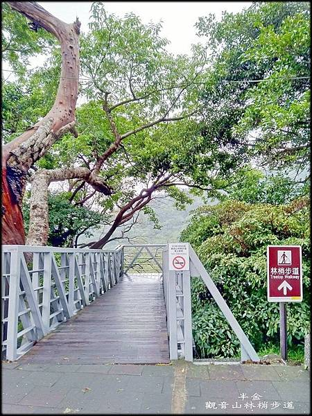 觀音山林梢步道-1_013.jpg