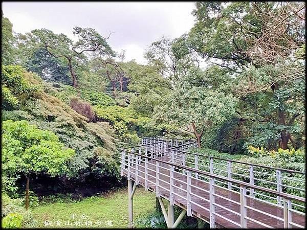 觀音山林梢步道-2_004.jpg