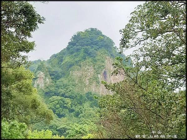 觀音山林梢步道-2_013.jpg