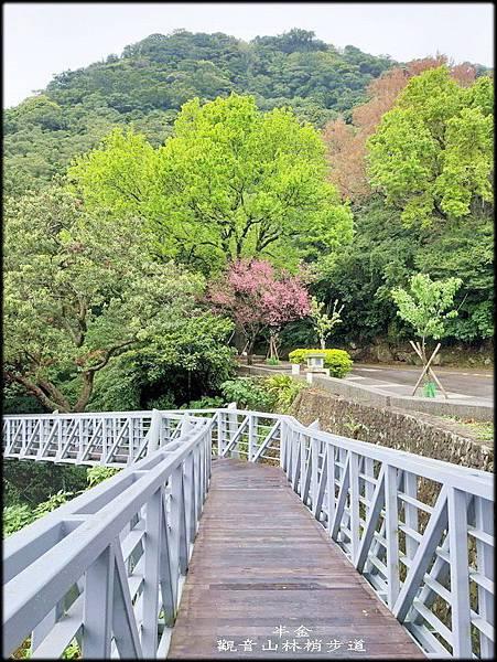 觀音山林梢步道-2_023.jpg