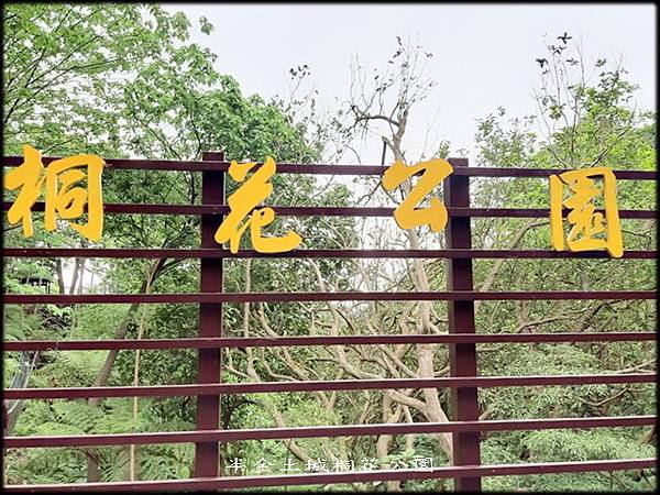 土城桐花公園-3_021.jpg