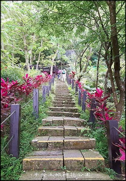 土城桐花公園-3_043.jpg