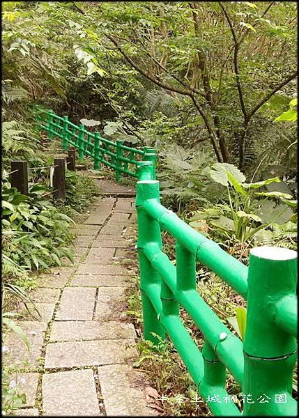 土城桐花公園-3_046.jpg