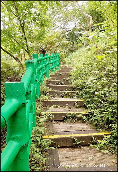 土城桐花公園-3_048.jpg